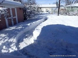 To the Snow-Covered Garden